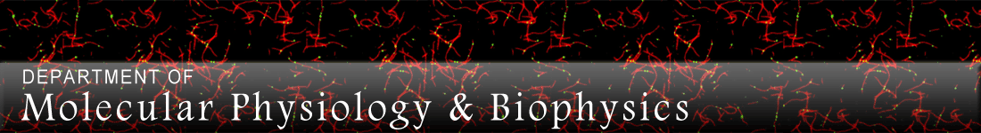 Molecular Physiology & Biophysics Graduate Program